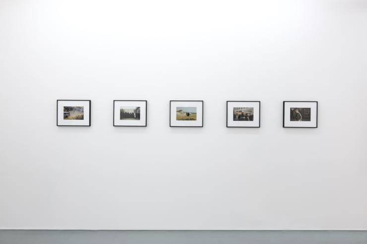 Raves and Riots at the Edel Assanti Gallery